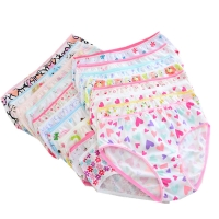 12pcs/Lot Girls Cotton Panties Briefs Gifts Children Underwear Cartoon briefs  Underpants 1-2Y gTNN0001