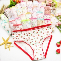 6pc/Lot  Fashion New Baby Girls Underwear Cotton Panties Kids Short Briefs Children Underpants