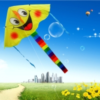 2017 New Design smiling face  kite Smile Stunt Kites Cometa Child Toys Four Color  Angel y Sports Beach toy