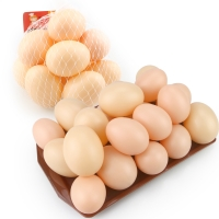 5PCS/Lot Hatching Egg Hen Poultry Hatch Breeding Simulation Fake Plastic Artificial Eggs DIY Painting Easter Egg Educational Toy