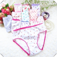 10pcs COTTON Kids Underwear Panties Girls Baby Pants Cute Girls Underwear Mixed Color Cueca Infantil
